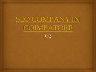 SEO Company Offer Wide Support to New Comers in Business