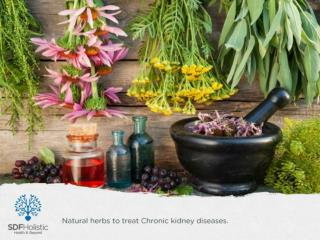 Natural herbs to treat Chronic kidney diseases.pptx