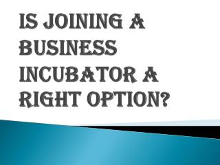 Is Joining a Business Incubator a Right Decision?