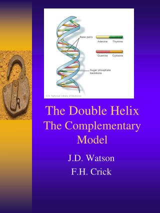 The Double Helix The Complementary Model