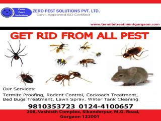 Best pest control services in Gurgaon with 10% special discount offers. Call at 9810353723.