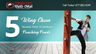 5 Wing Chun Training Tools Increase Punching Power