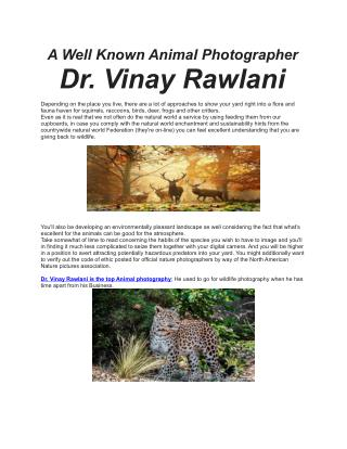 A Well Known Wildlife Photographer: Dr. Vinay Rawlani