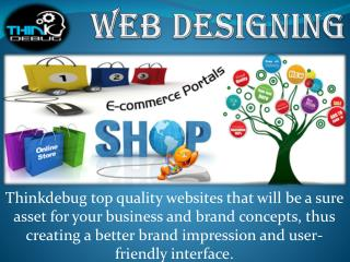 Ecommerce Website designing company in indore.