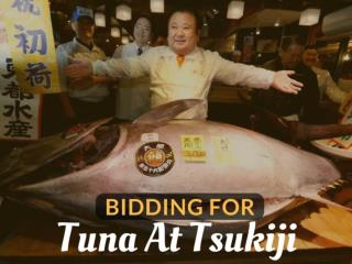 Bidding for tuna at Tsukiji