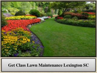 Get Class Lawn Maintenance Lexington SC