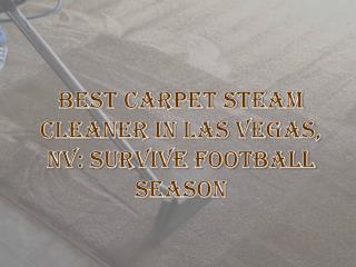 Carpet Cleaning Las Vegas , Best Carpet Steam Cleaner Las Vegas NV