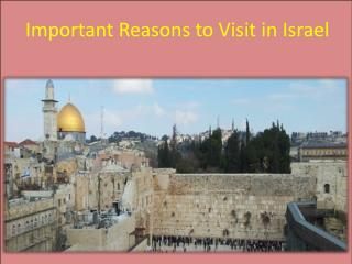 Important Reasons to Visit in Israe
