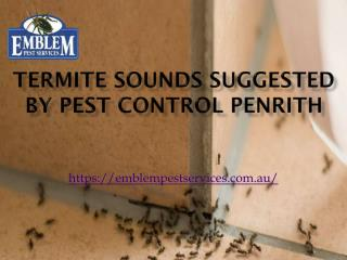 Termite Sounds Suggested by Pest Control Penrith