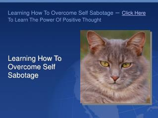 Procrastination- Learning How To Overcome Self Sabotage