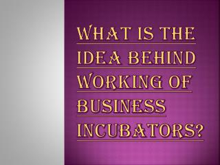 Idea's behind Working of Business Incubators