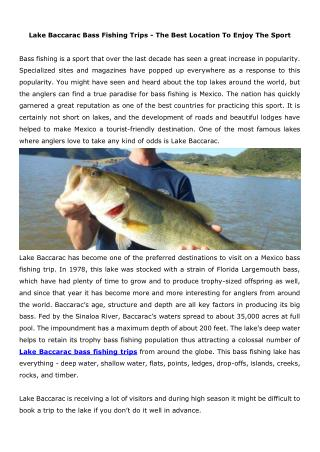 Lake Baccarac Bass Fishing Trips - The Best Location To Enjoy The Sport