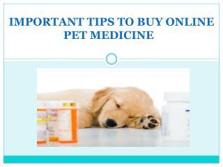 Important Tips to Buy Online Pet Medicine