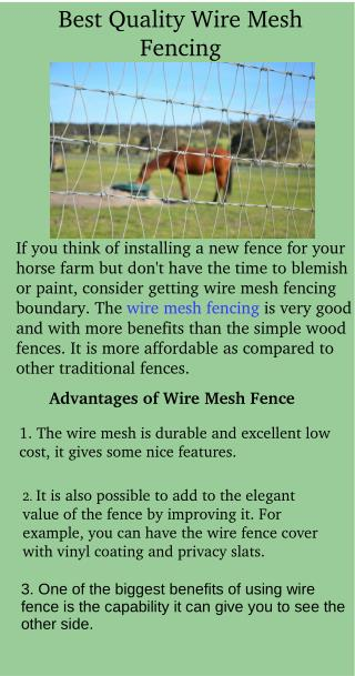 Best Quality Wire Mesh Fencing