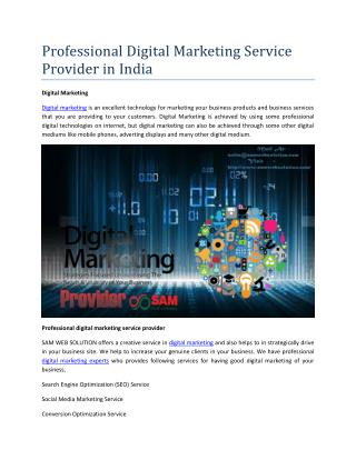 Professional Digital Marketing Service Provider in India