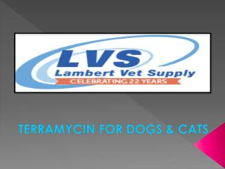 Terramycin for Dogs and Cats