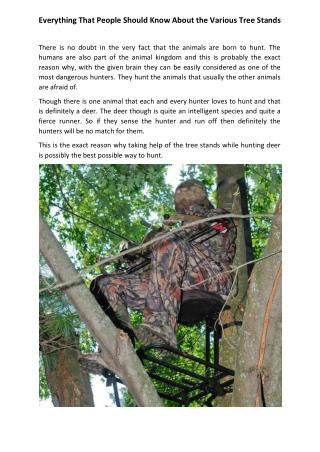 Everything That People Should Know About the Various Tree Stands