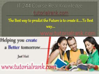 IT 244    Course Real Knowledge / tutorialrank.com