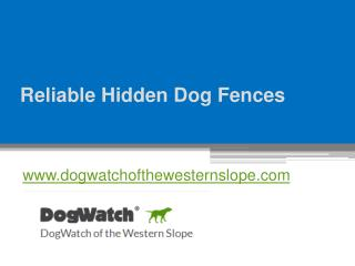 Reliable Hidden Dog Fences - www.dogwatchofthewesternslope.com