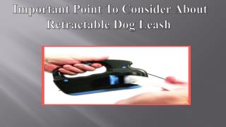 Important Point To Consider About Retractable Dog Leash