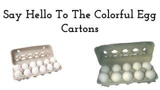 Say Hello To The Colorful Egg Cartons