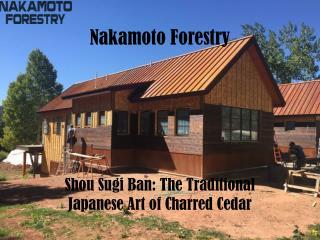 Shou Sugi Ban : The Traditional Japanese Art of Charred Cedar