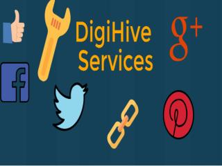 Get Know about Digihive Services