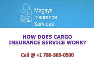 How does Cargo Insurance Service Work?