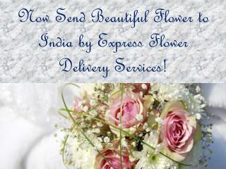 Same Day Flower Delivery Services | Express Flower Delivery | Giftalove