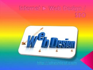 Web Developers South Florida