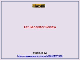 Cat Generator Review