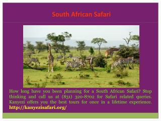South Africa Safari Cost