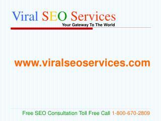 Viral SEO Services: Professional SEO SEM PPC SMO Company