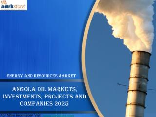 Angola Oil Markets, Investments, Projects and Companies 2025: Aarkstore