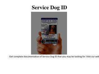 Search and Rescue Dog ID