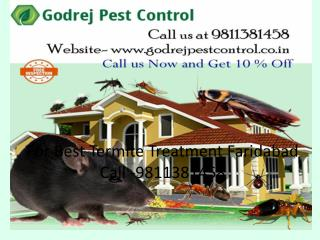 For Best Termite Treatment Faridabad Call -9811381458
