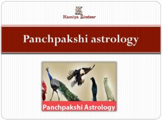 Panchpakshi astrology services