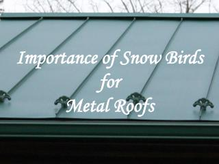 Importance of Snow Birds for Metal Roofs - Alpha Rain Inc.