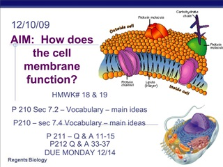 AIM:  How does the cell membrane function