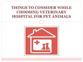 Things to Consider While Choosing Veterinary Hospital for Pet Animals