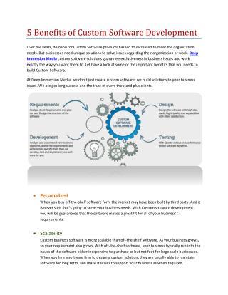 Benefits of Custom Doftware Development | Deep Immersion Media