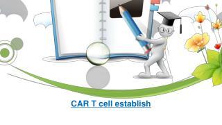 CAR T cell establish