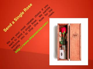 One Red Rose Online Order
