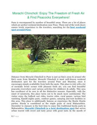 Morachi Chincholi Enjoy the freedom of fresh air & find peacocks everywhere!