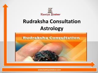 Rudraksha Consultation services