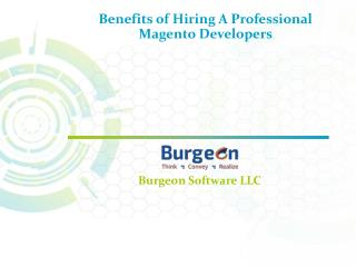 Benefits of Hiring A Professional Magento Developer in Dallas