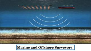 Marine and Offshore Surveyors