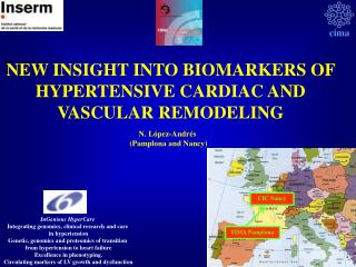 NEW INSIGHT INTO BIOMARKERS OF HYPERTENSIVE CARDIAC AND VASCULAR REMODELING