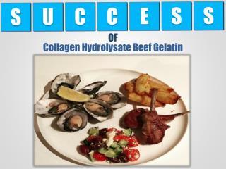 Collagen Hydrolysate Beef Gelatin Protein