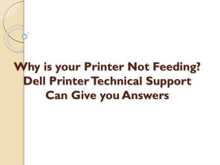 Why is your Printer Not Feeding? Dell Printer Technical Support Can Give you Answers